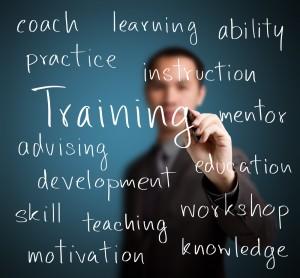 training31